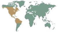 Harapós vagy alligátorteknős - (Chelydra serpentina)